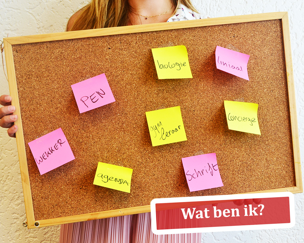 Brugklas-Bootcamp-Wat-ben-ik-Studiebegeleiding-Nijmegen